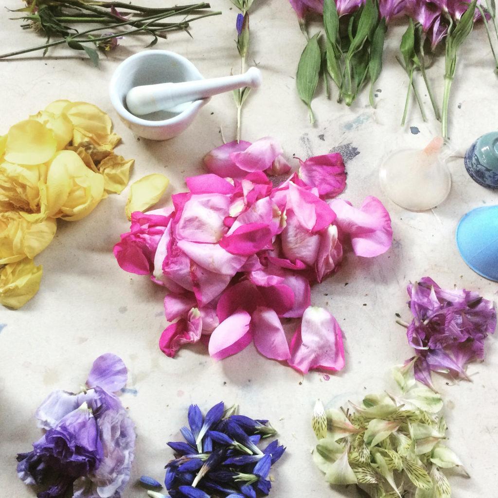Taller «Tintas Florales y Dibujo de la Naturaleza»