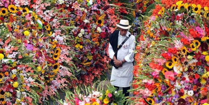 """Las miles de flores que desfilan en la colorida y bella """"Feria de las Flores de Medellín"""""""
