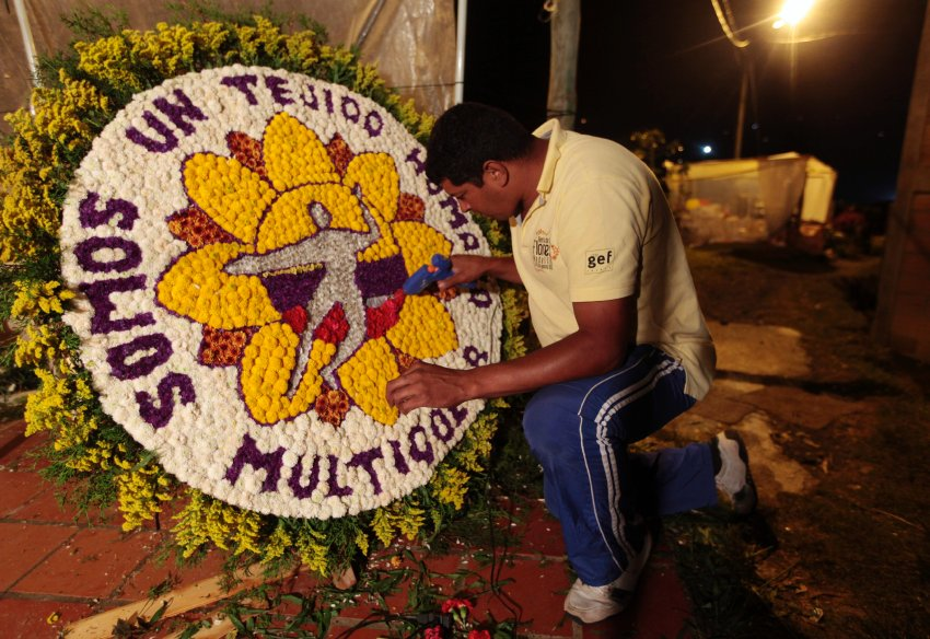 Nelson Zapata, florist prepares a flower arrangement in the town of Santa Elena, a day before the annual flower parade in Medellin August 10, 2013. REUTERS/John Vizcaino (COLOMBIA - Tags: SOCIETY)
