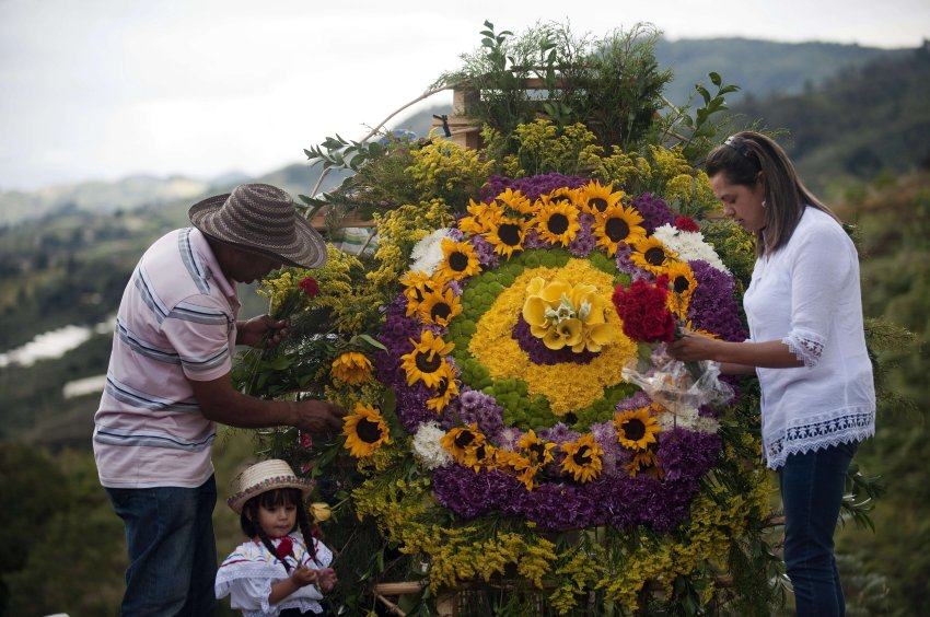 "Colombian Ana Fabiola Ramirez and her father Jairo Ramirez work in the making of a ""Silleta"" (a traditional flower arrangement) in a farm in Santa Helena municipality, Antioquia department, Colombia on August 10, 2013, on the eve of the traditional ""Silleteros"" Parade within the Flower Festival. AFP PHOTO/ Raul ARBOLEDA"