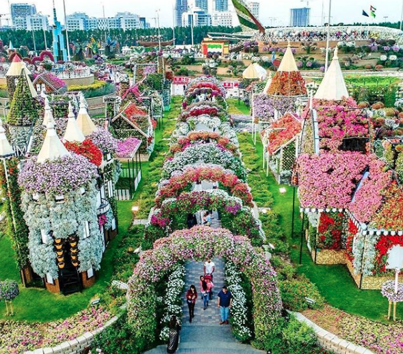 """""""Miracle Garden"""" El Jardín de flores más grande del mundo"""""""