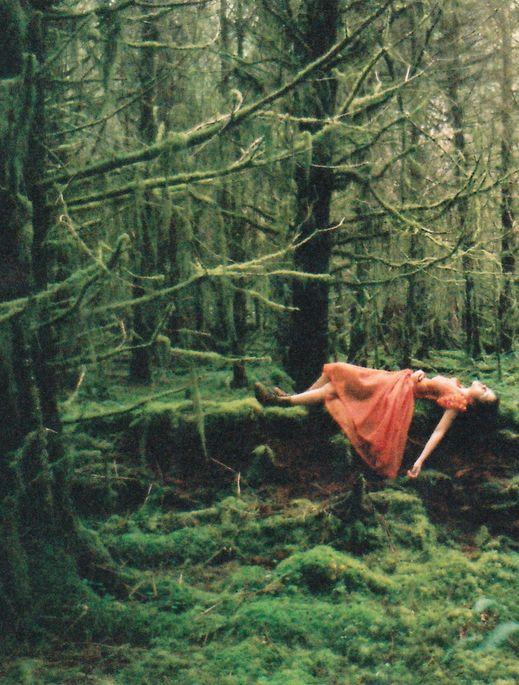 El Llamado de lo Salvaje: volver  a la naturaleza para volver al alma