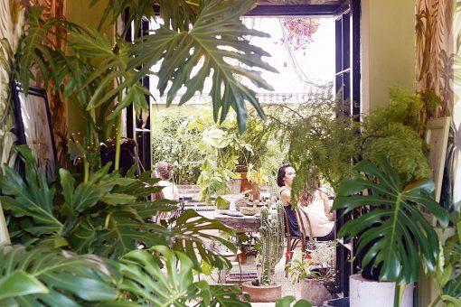 Botánica Bistro