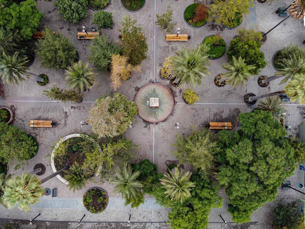 Una visión del mundo sin los humanos en tiempos de coronavirus