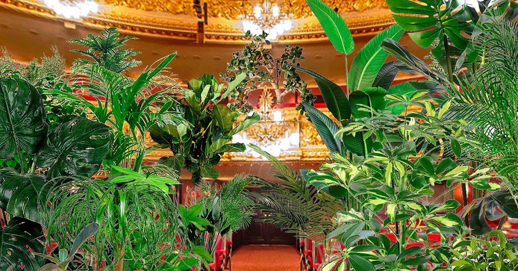El Gran Teatre del Liceu en Barcelona, realizó un concierto conceptual ante 2.292 plantas