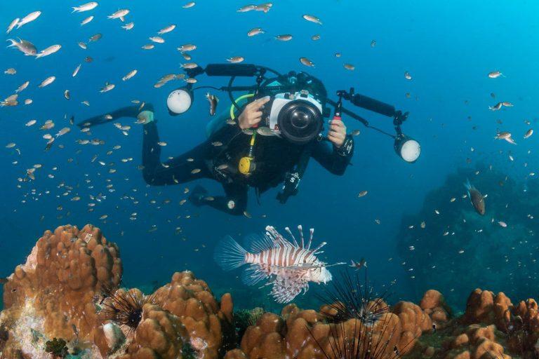 La bióloga y fotógrafa marina Catalina Velasco busca salvar el océano chileno