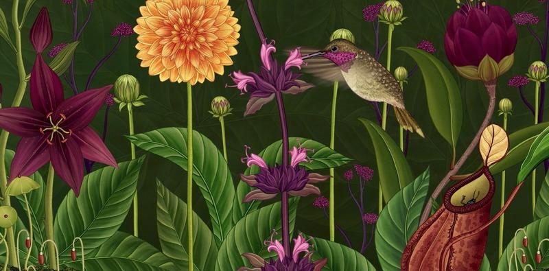 """""""Una Historia de Flores"""" animación botánica de Azuma Makoto que muestra el ciclo de vida de las flores"""