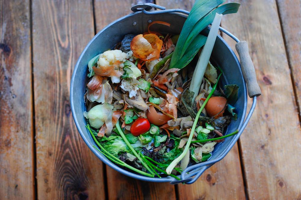 Científicos convierten desechos de alimentos en energía limpia
